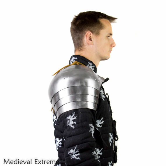 7 segmented pauldtrons (shoulders) for armored combat