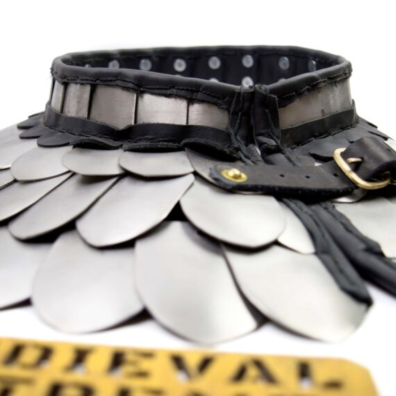 advanced scales neck protection front