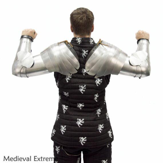 Plate arms and pauldtrons bundle back